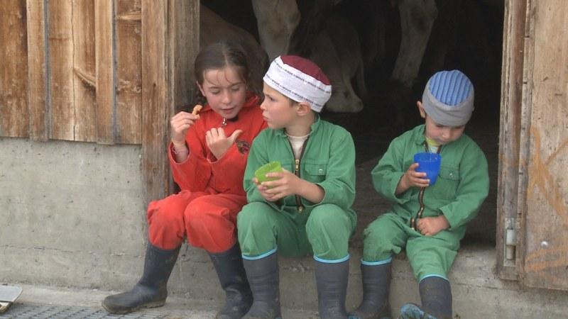 Kühe, Käse und drei Kinder