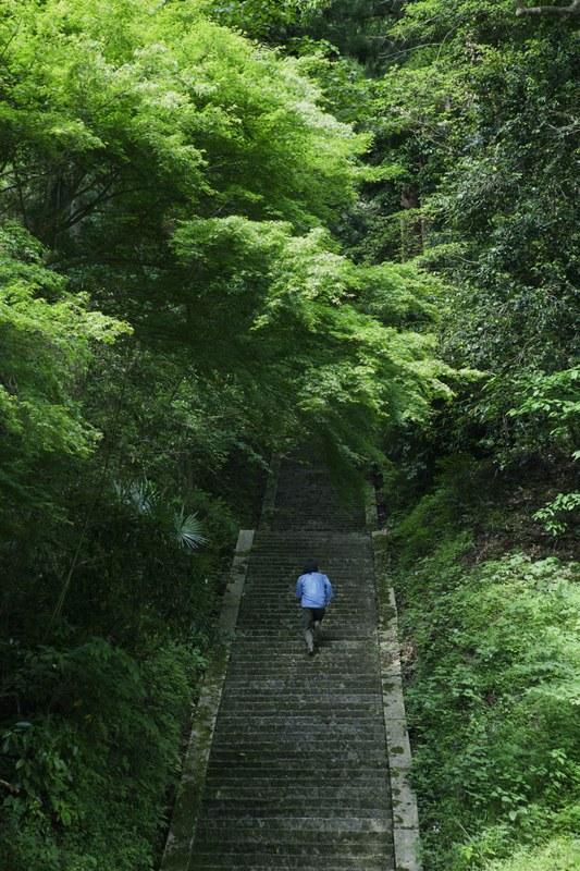 Hanezu_06-wald.jpg